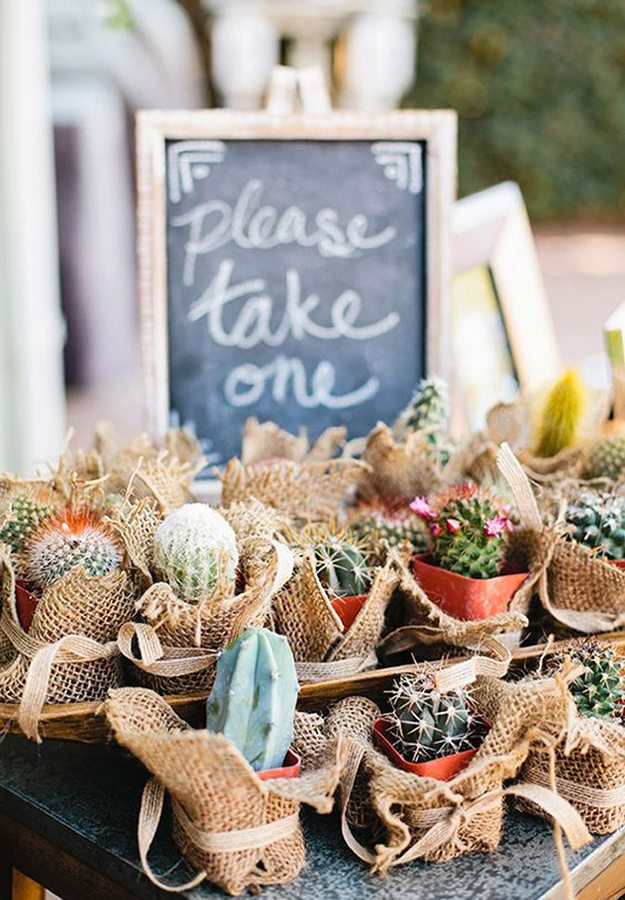 10-great-ways-infuse-wedding-cacti-favours